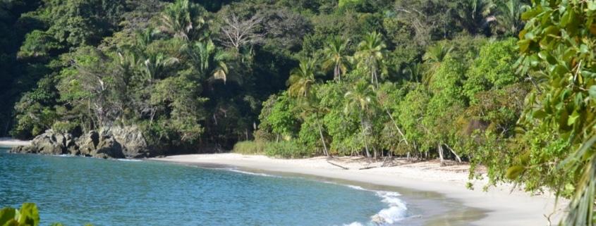 Rio Tarcoles Cruise Manuel Antonio Tour Costa Rica Caravan Tours